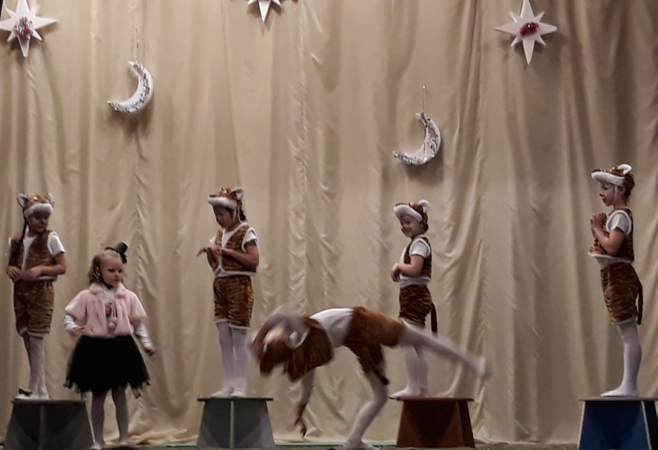 В Шира прошли пятые Рождественские встречи особенных детей