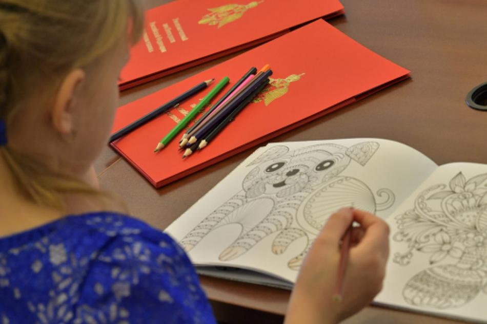 Экспертный совет при детском омбудсмене в Новосибирской области рассмотрел вопросы, связанные с определением местожительства ребенка
